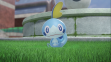 Sobble (Water)